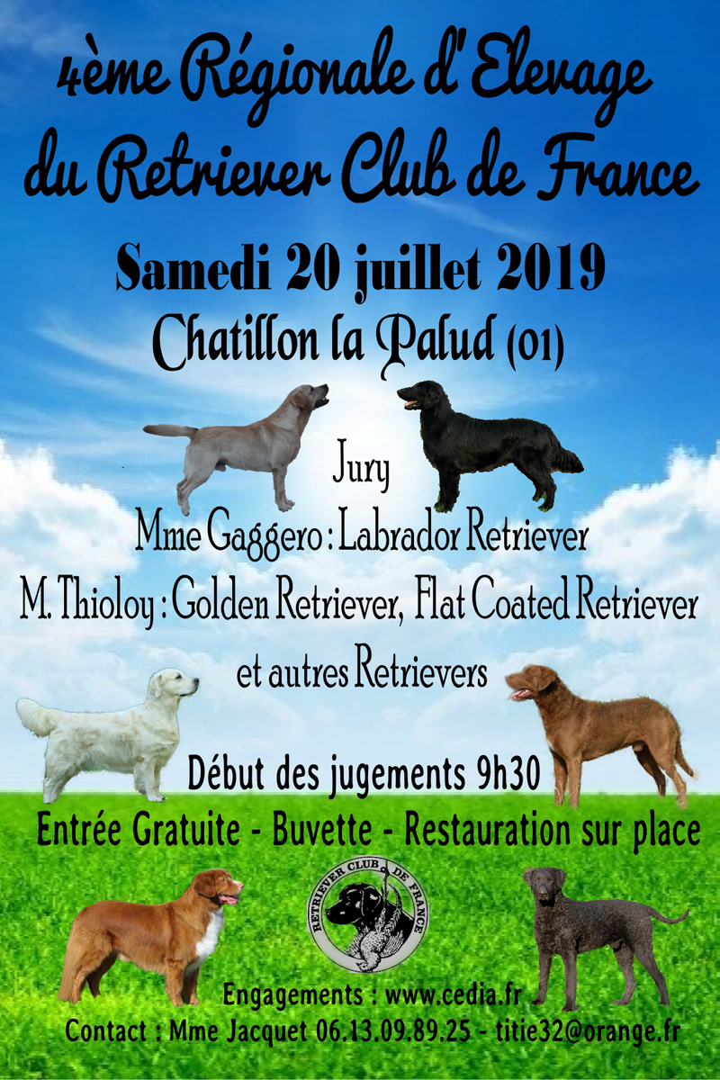 chatillon2019